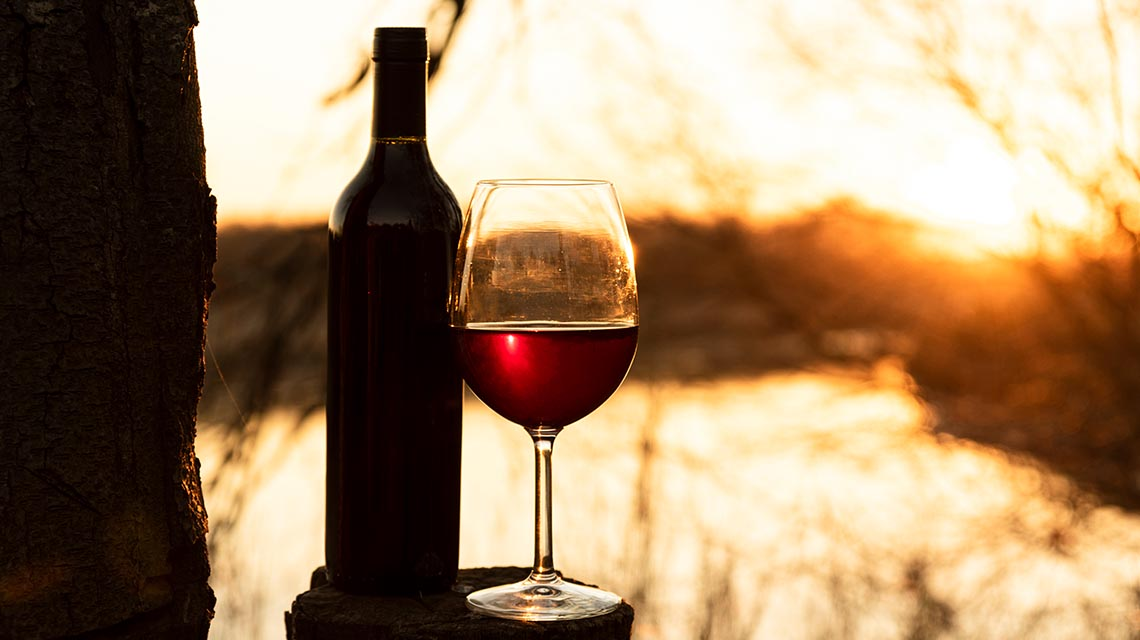 Alcohol may help seniors to avoid physical disability